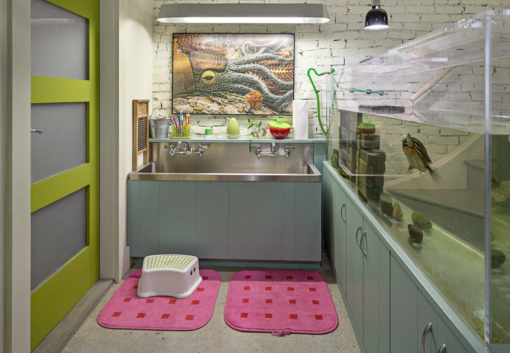 Sink Turtle.jpg