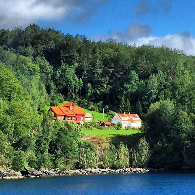 Houses on the fjord... People being alone. Together.