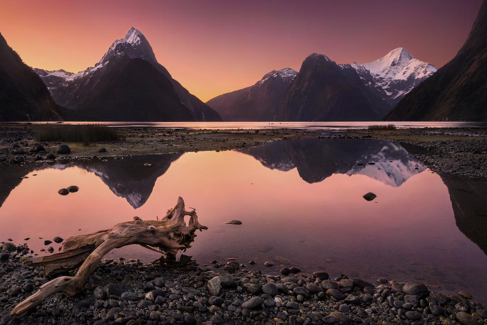 فیوردلند نیوزلند