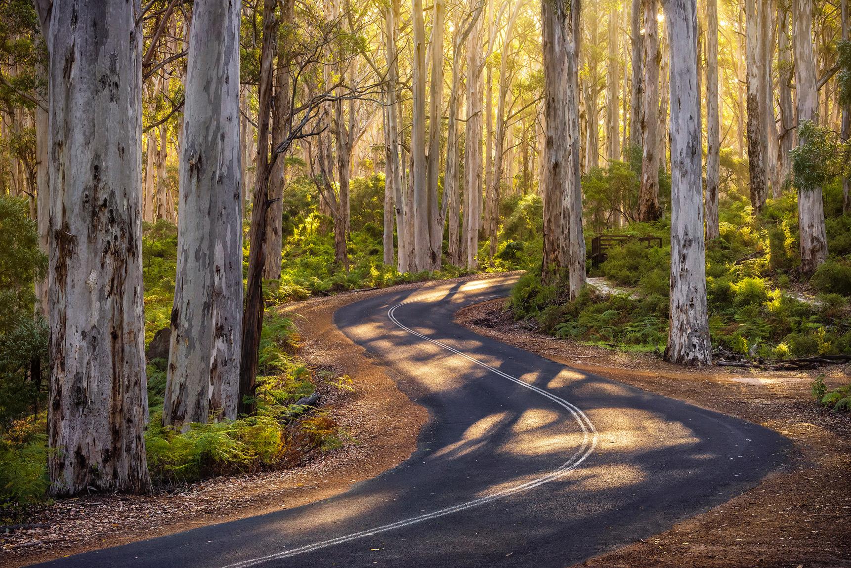 DK Photography - Margaret River, Western Australia