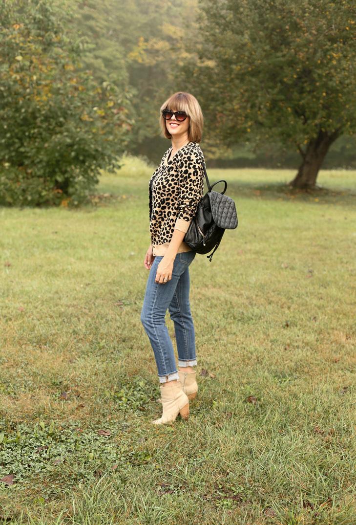 Leopard+3.jpg