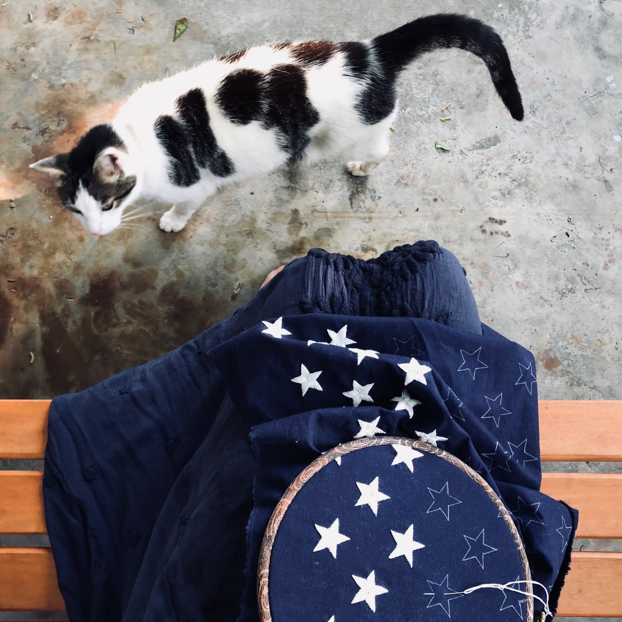Embroidering Each Star