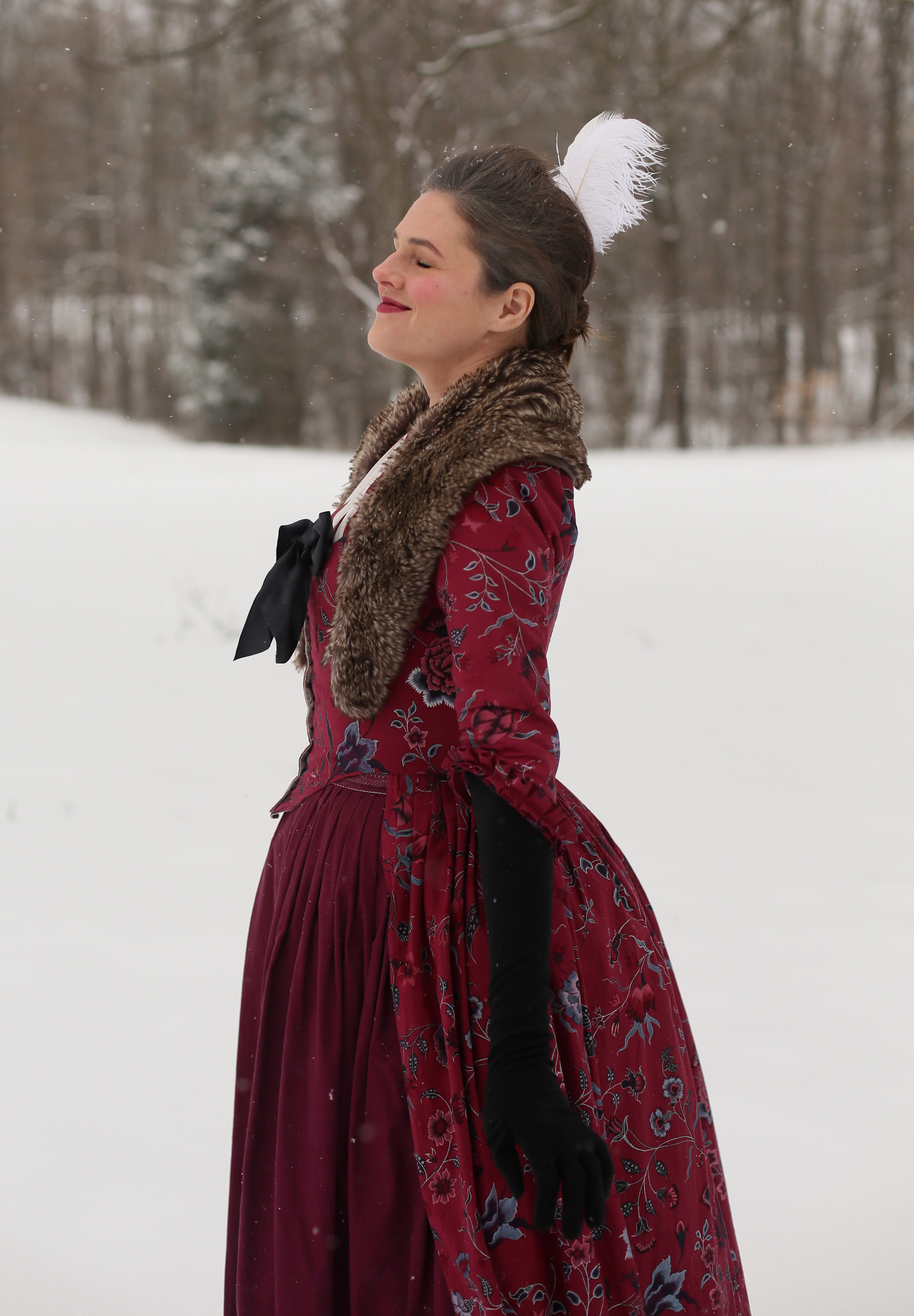 Georgian Red Winter Gown
