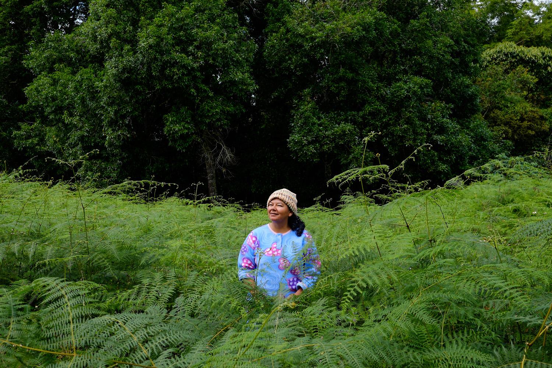Blanca Cecilia Santana Cortés, Jumilito. I called it jungle, she called it community fields.