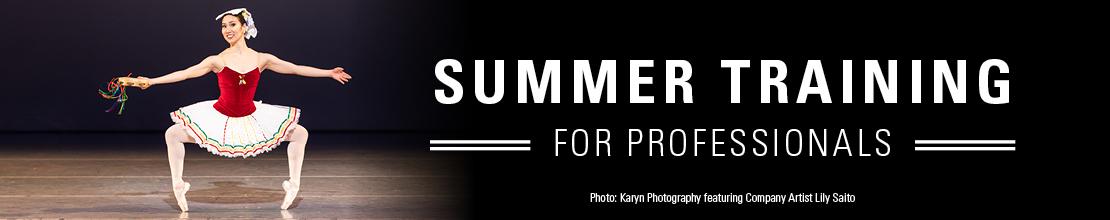Summer-Training-Prof-Banner.jpg