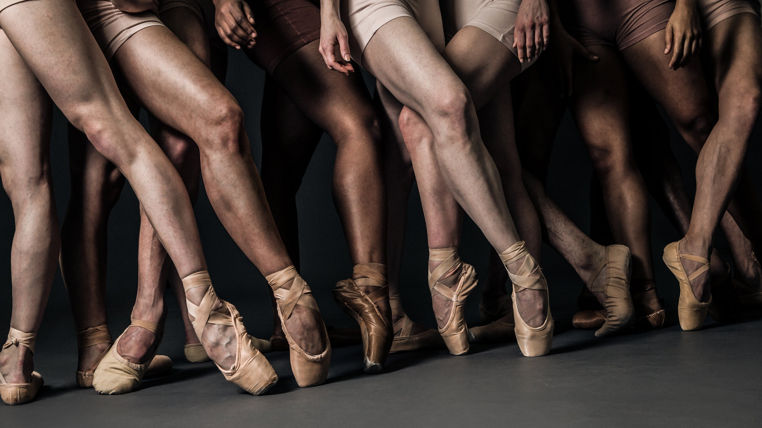 Mission: - Friends of Nashville Ballet promotes a passion for the arts through social engagement and volunteerism to create growth for Nashville Ballet on the stage and in the community.Photo by MA2LA