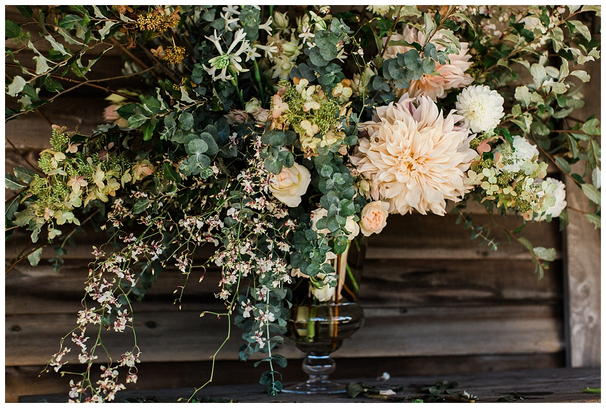 Florals:  Fox Fodder Farm