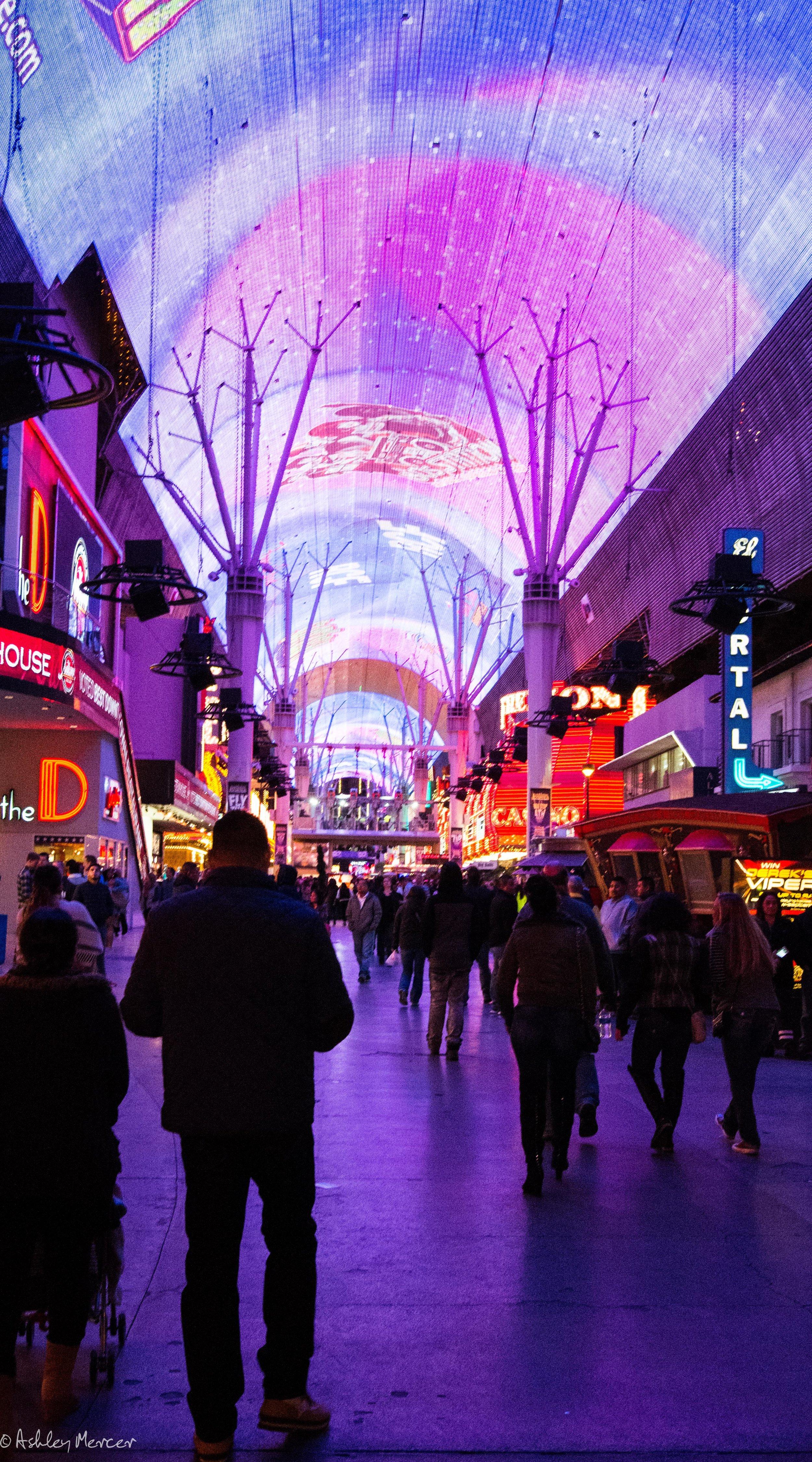 Las Vegas-76.jpg