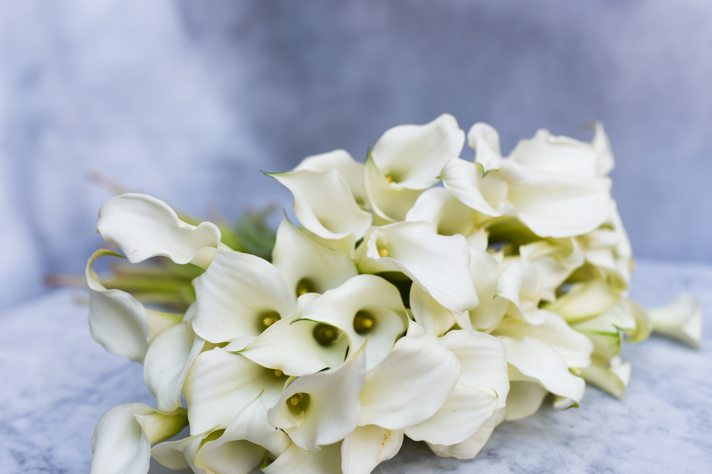 Stunning white calla lilies for winter bridesmaid's bouquet