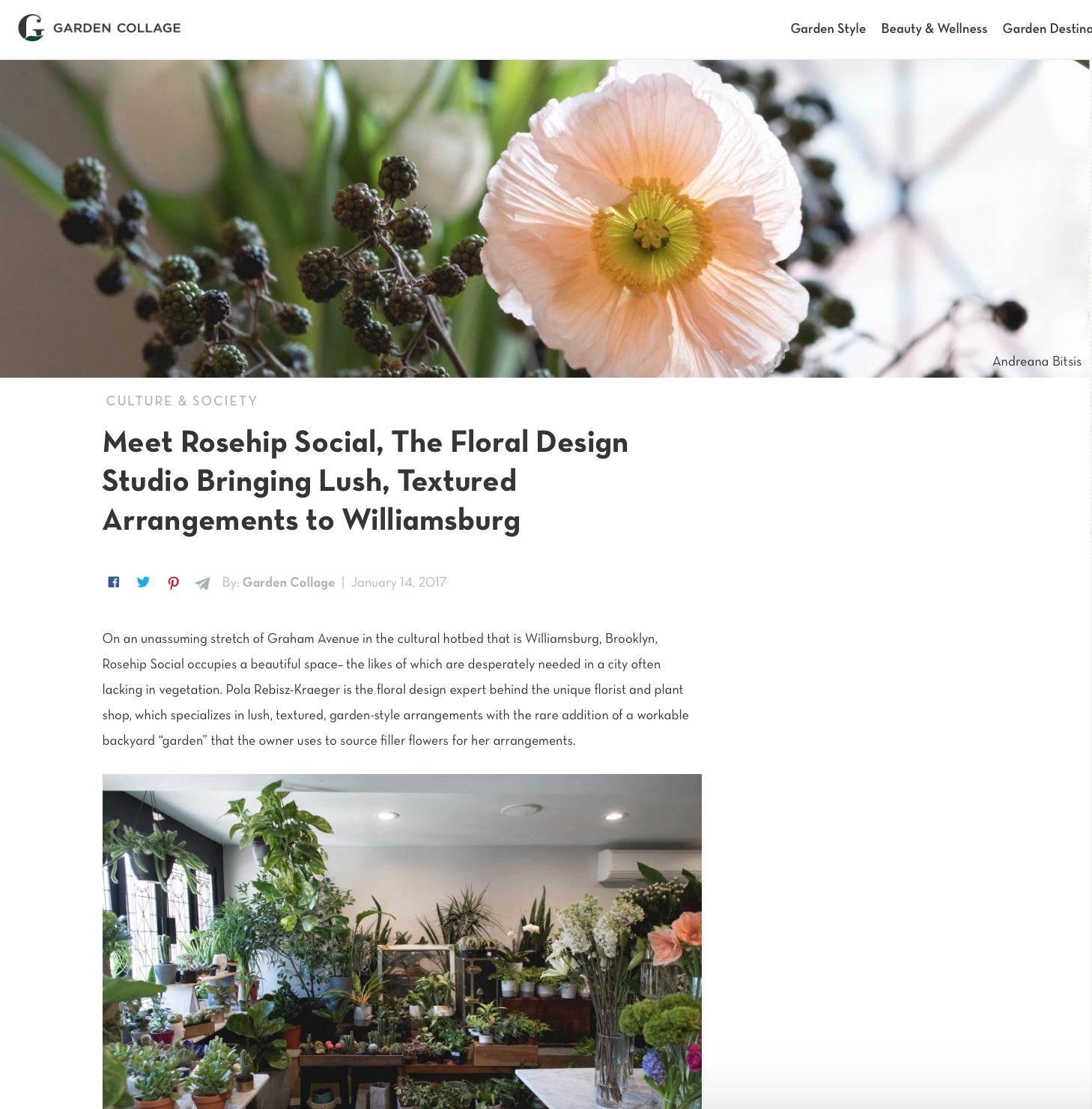 Garden Collage Featured Article of Rosehip Social Flower Event Design
