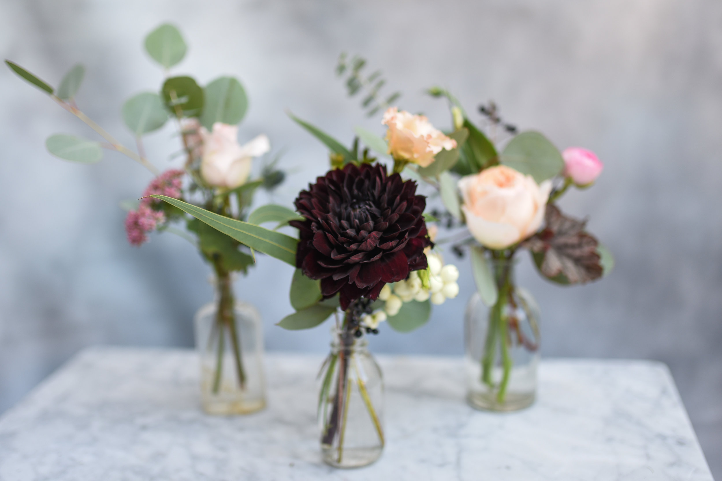 Light roses and dark dahlias are a pretty combination with the softly blue eucalyptus