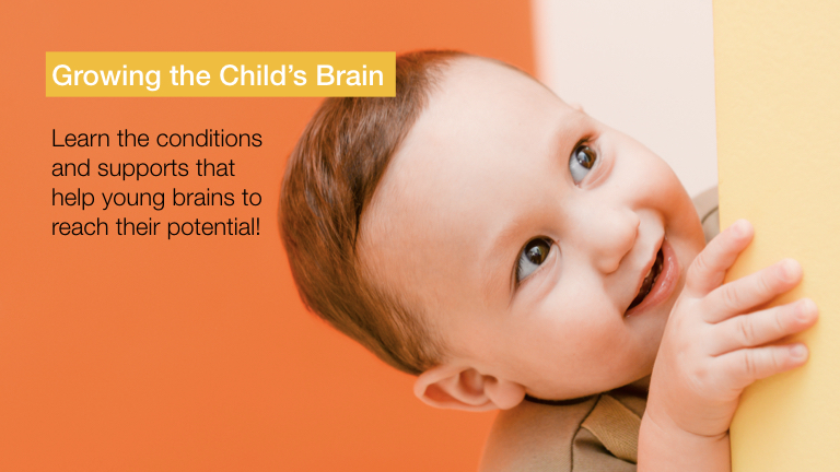 Growing A Child's Brain
