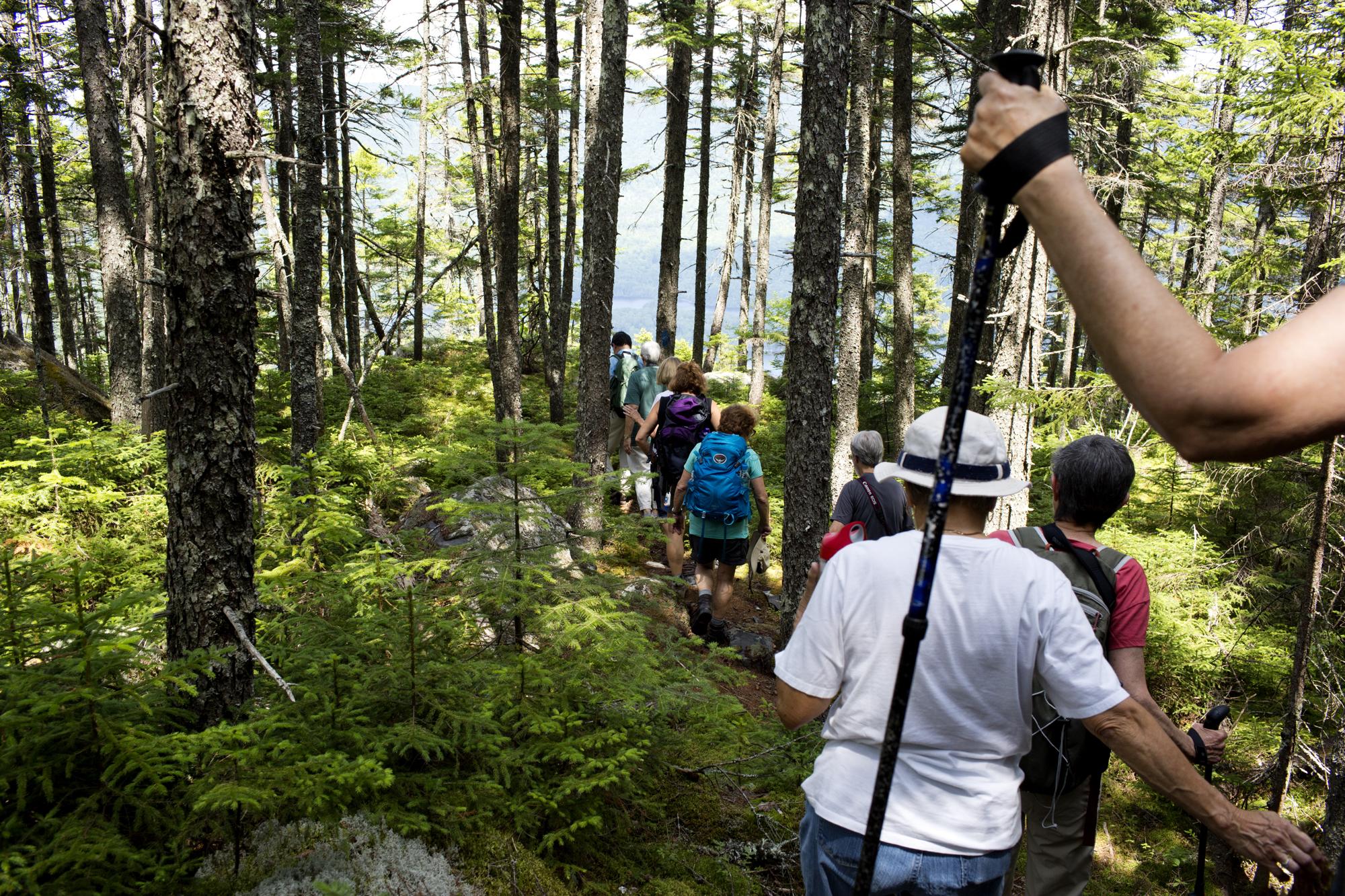 Naturalist Weekend participants hike Borestone Mountain Audubon Sanctuary trails near Elliotsville, Maine on July 21.