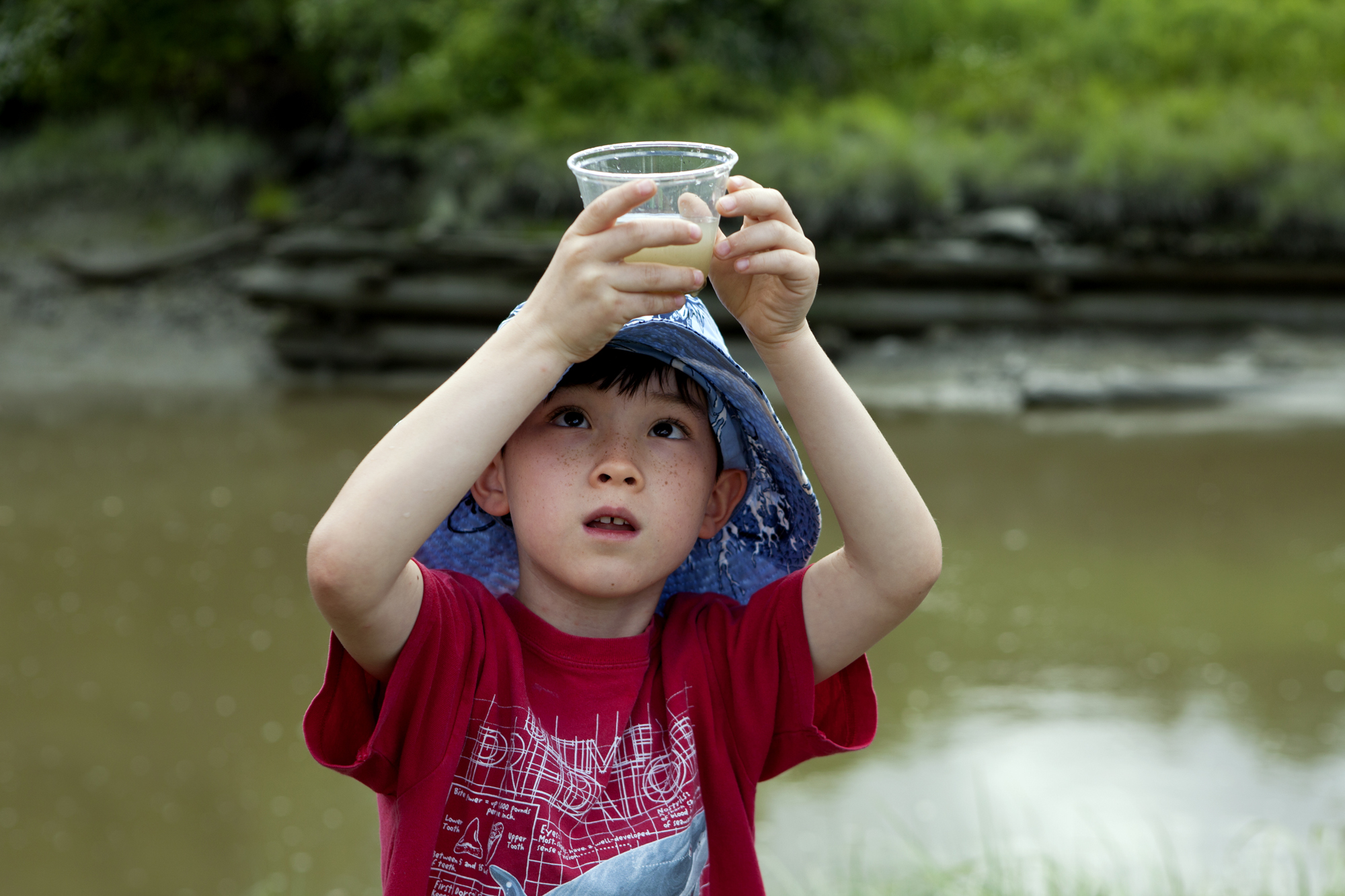Maine Audubon camper Matthew investigates a water sample from the Harraseeket River during a field trip to Mast Landing Audubon Sanctuary in Freeport, Maine on June 28.