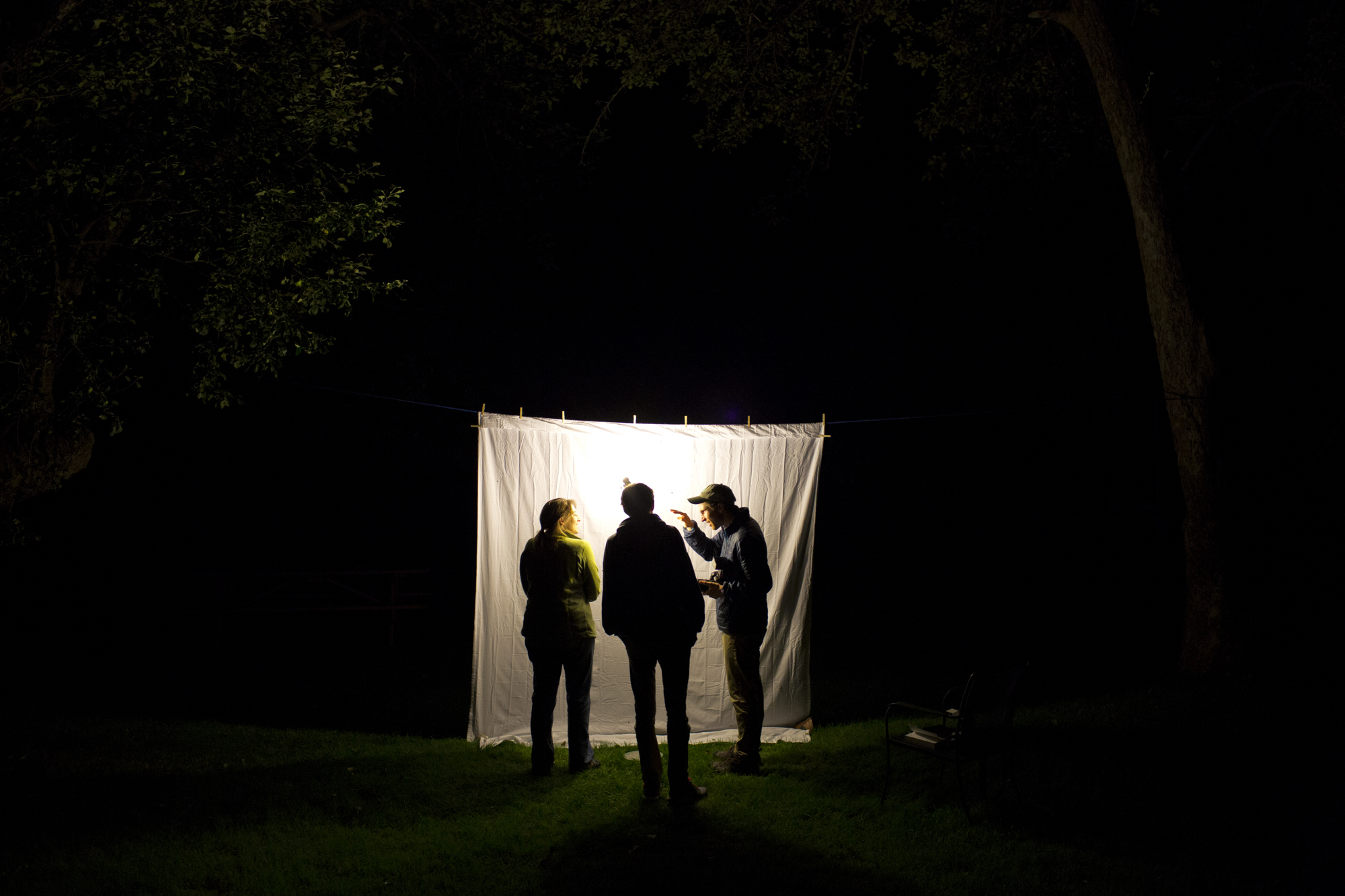Sarah Haggerty, left, Fyn Kind, and Doug Hitchcox look for moths late in the evening at Gilsland Farm Audubon Center in Falmouth, Maine on July 26.