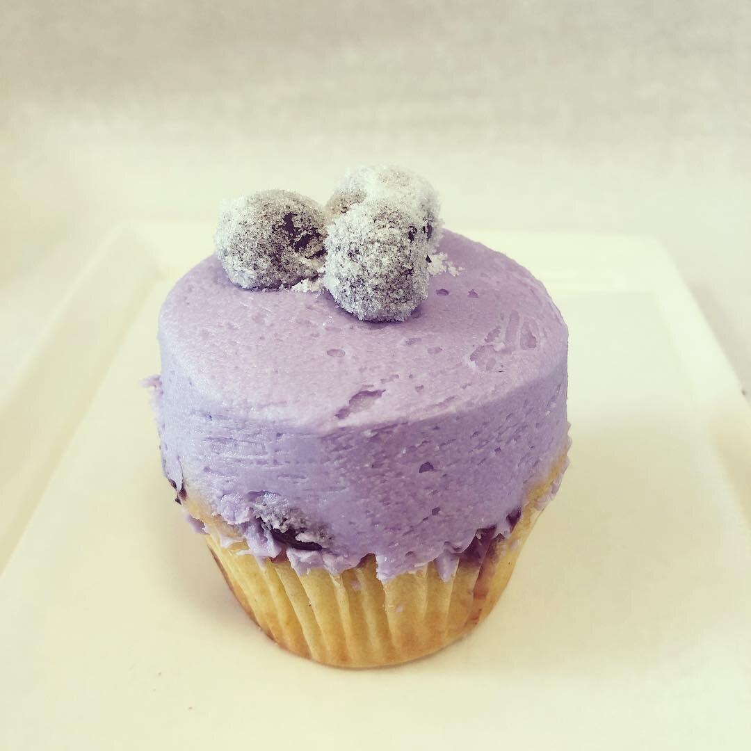 lavenderblueberrycupcake.jpg