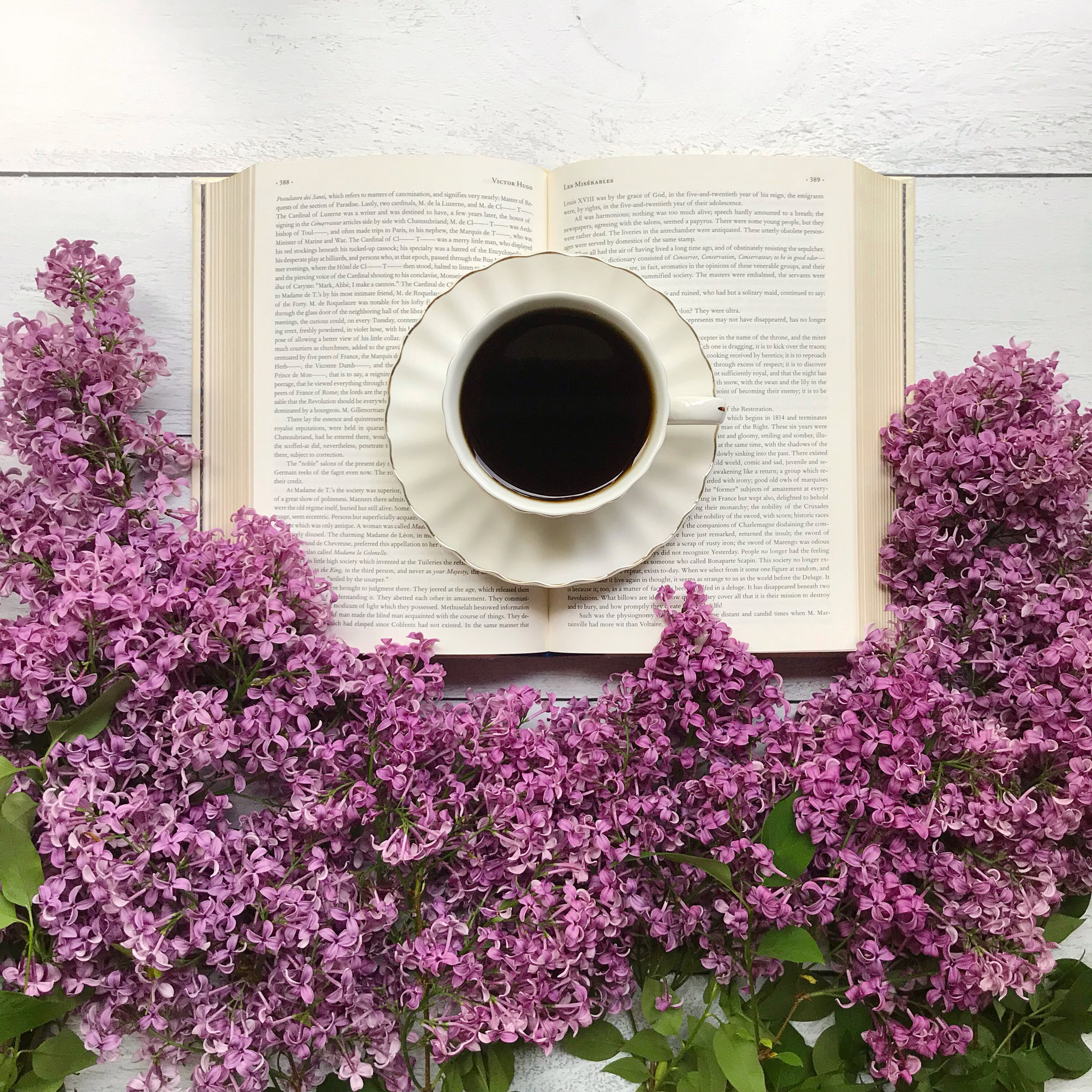 Books and lilacs.JPG