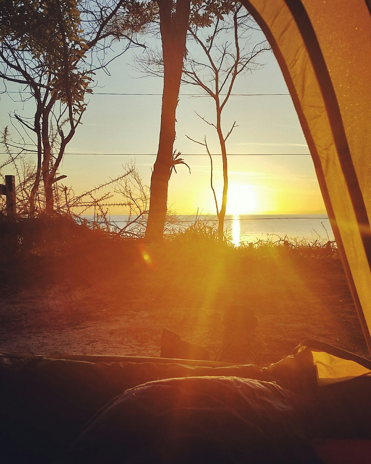 View of the sunrise over the bay from my tent.
