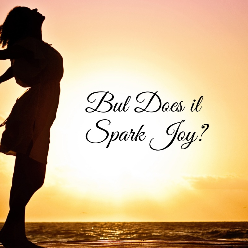 But+Does+it+Spark+Joy_+%281%29.jpg