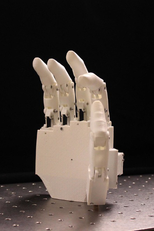 A low-cost prosthetic hand.