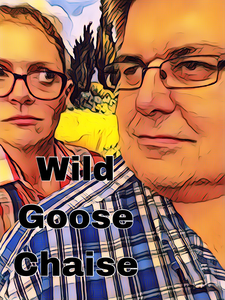 Wild Goose Chaise.JPG