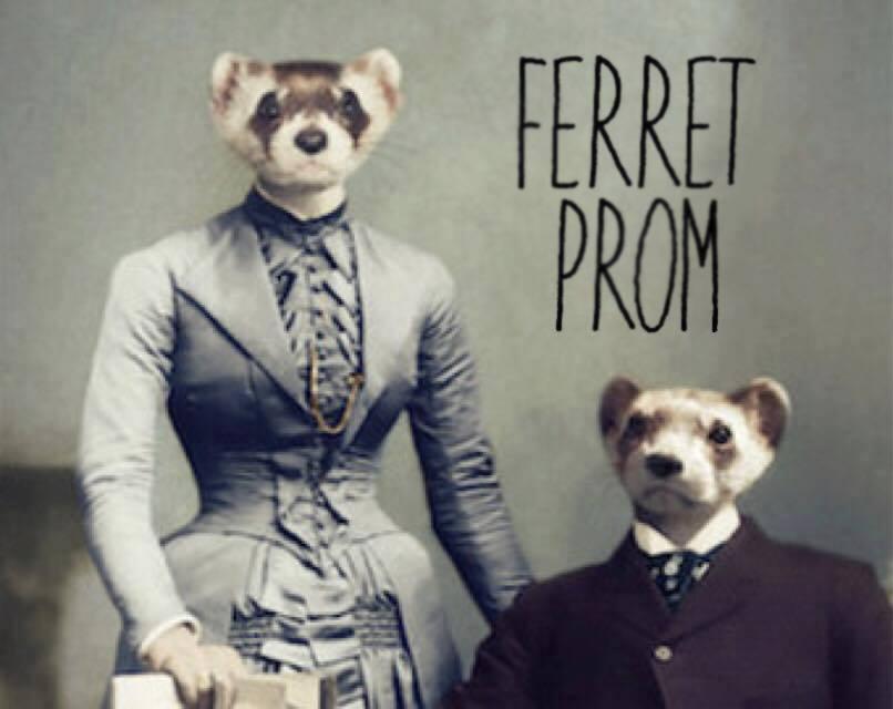 Ferret Prom.jpg
