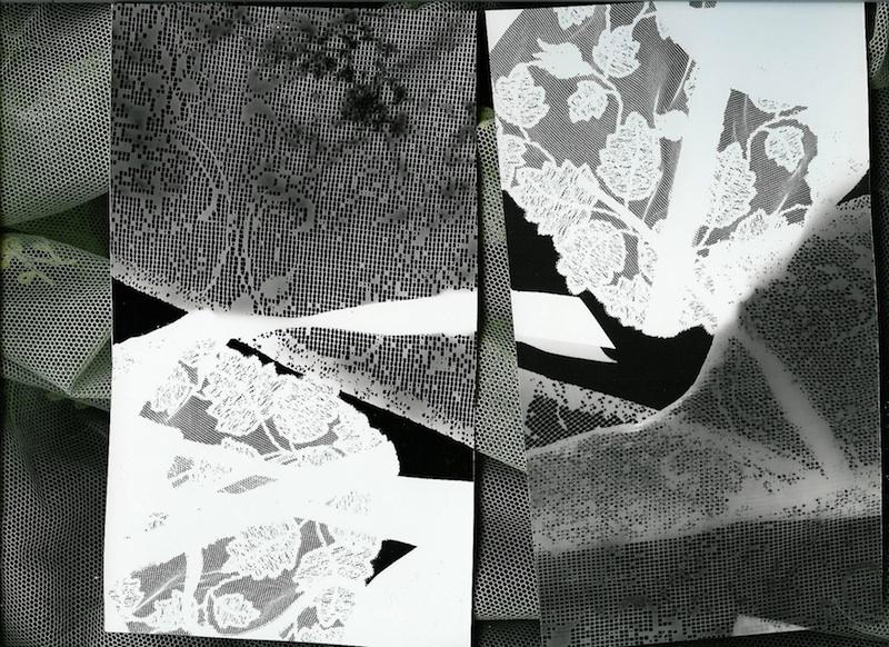 Coppia  - Rayografia e tulle, cm 25 x 29