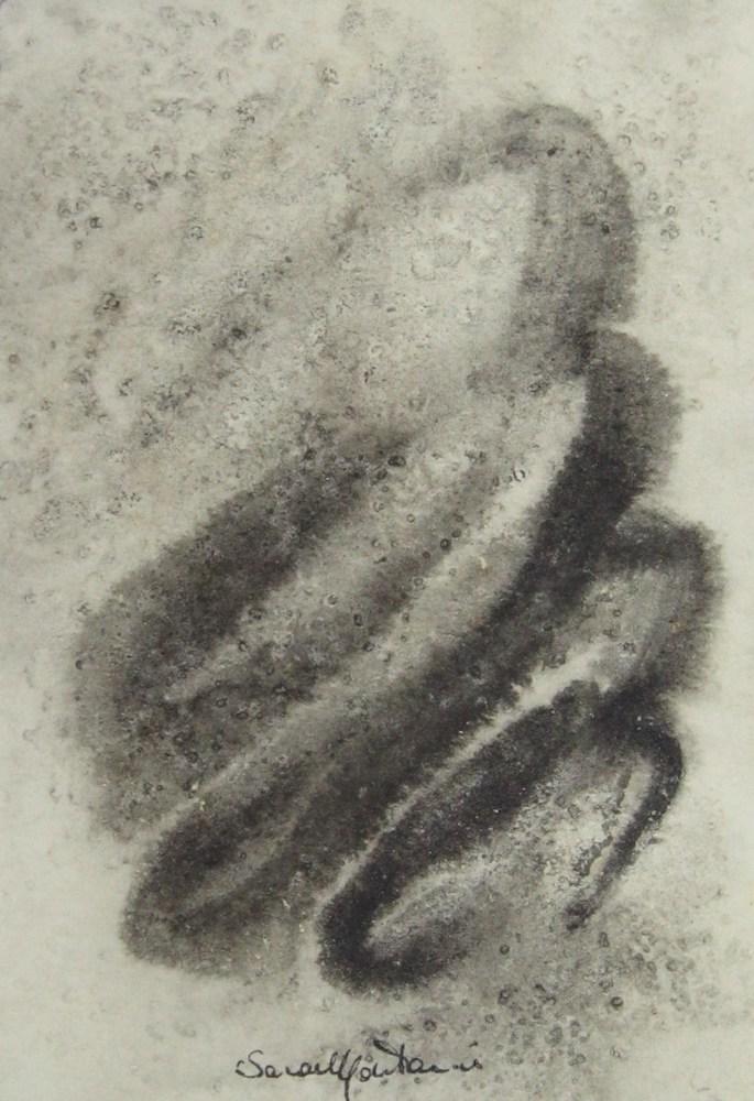 Plancton o Plasmon?   1999, china su carta, carta Sicars edizione, cm 13 x 9