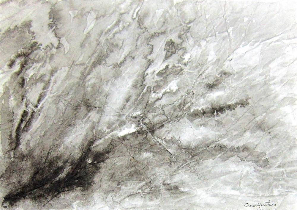Una volta era albero -  1998, china e acquerello su carta, 35 x 50 cm