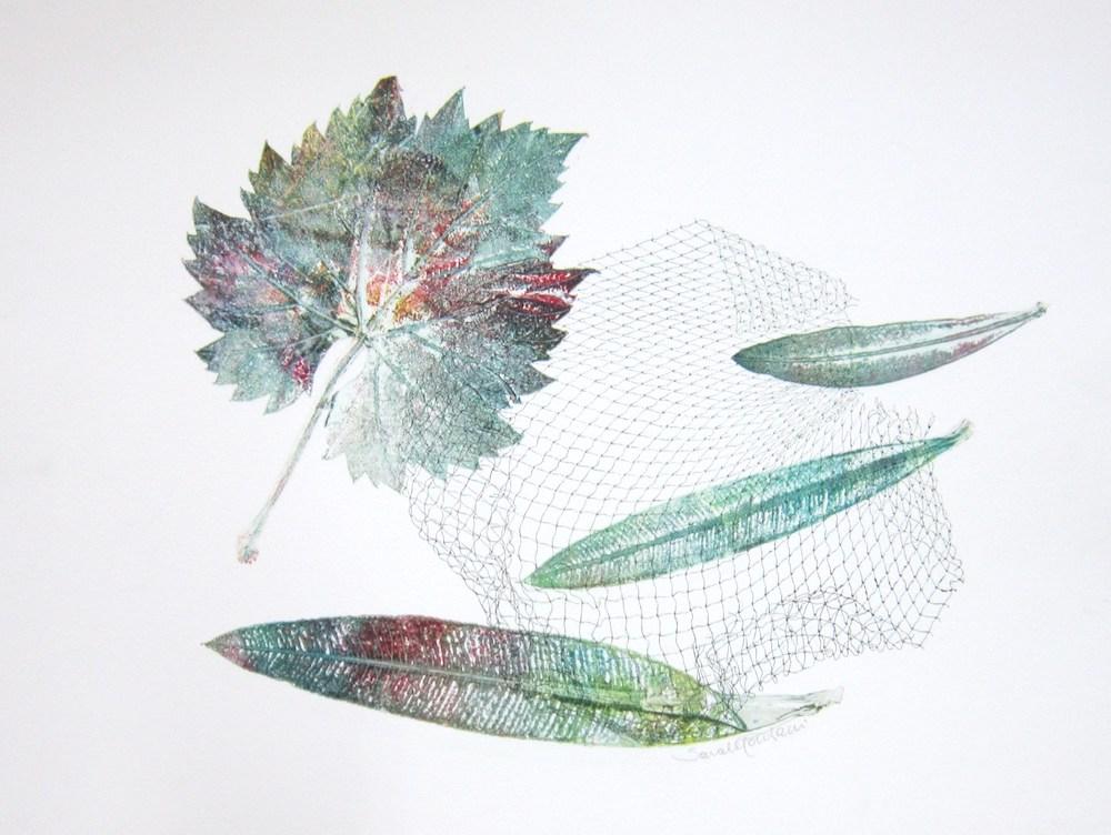 Vite e Oleandro   2010, foglie e rete stampate a monoprint, carta Graphia, 30 x 40 cm