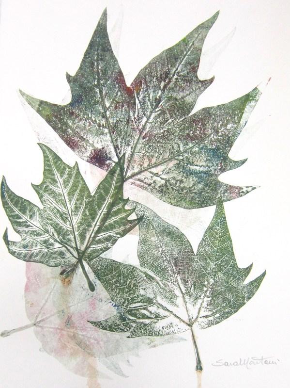 2010, foglie stampate a monoprint, carta Graphia, 40,5 x 30 cm