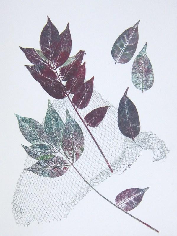2010, foglie e rete stampate a monoprint, carta Graphia, 41 x 30,3 cm