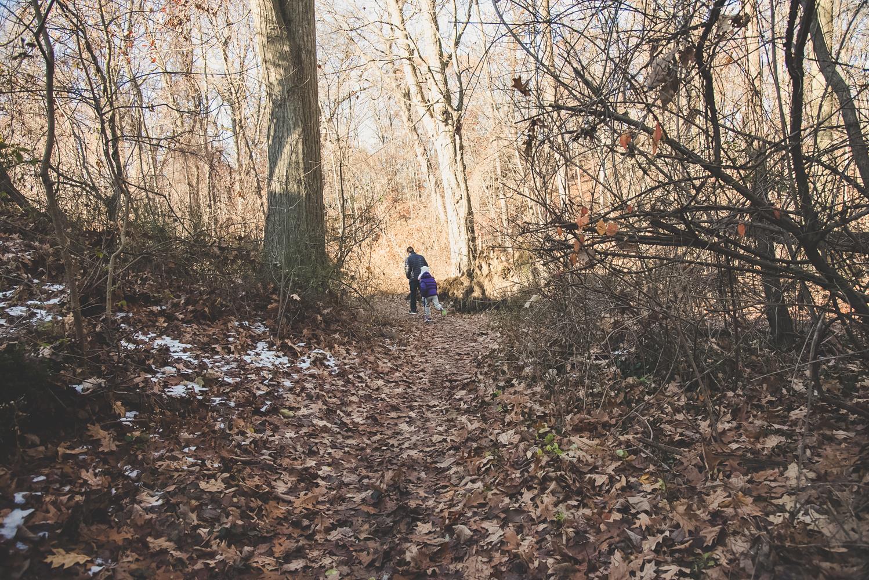 hike (3 of 13).jpg