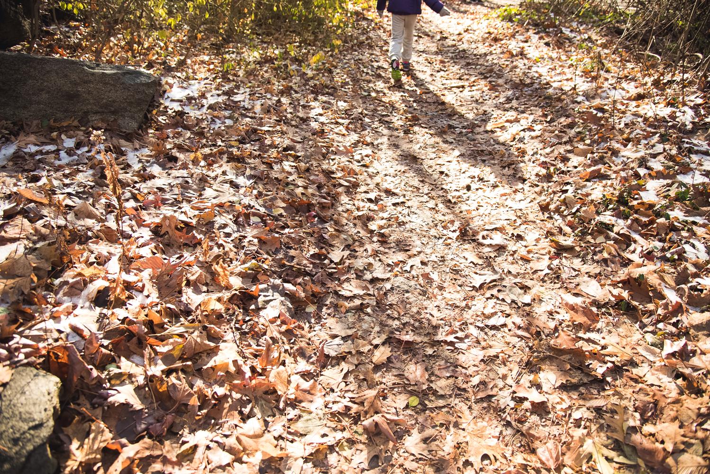 hike (6 of 13).jpg