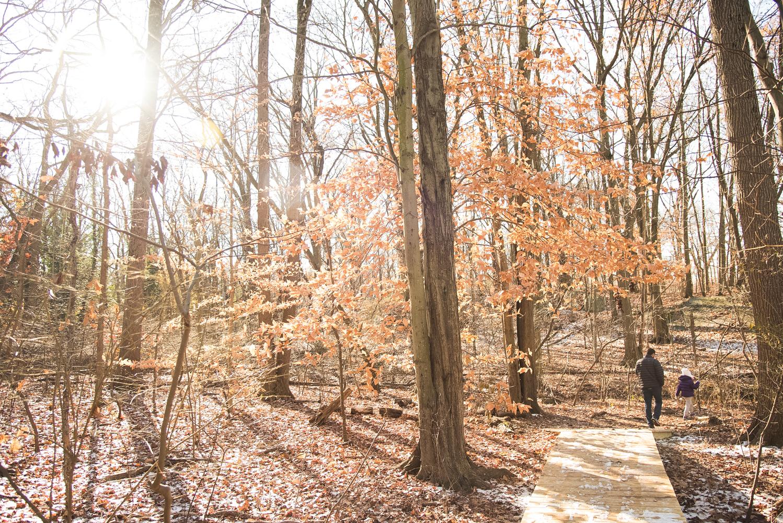 hike (9 of 13).jpg