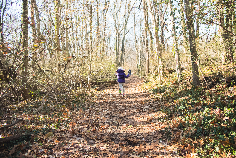 hike (8 of 13).jpg