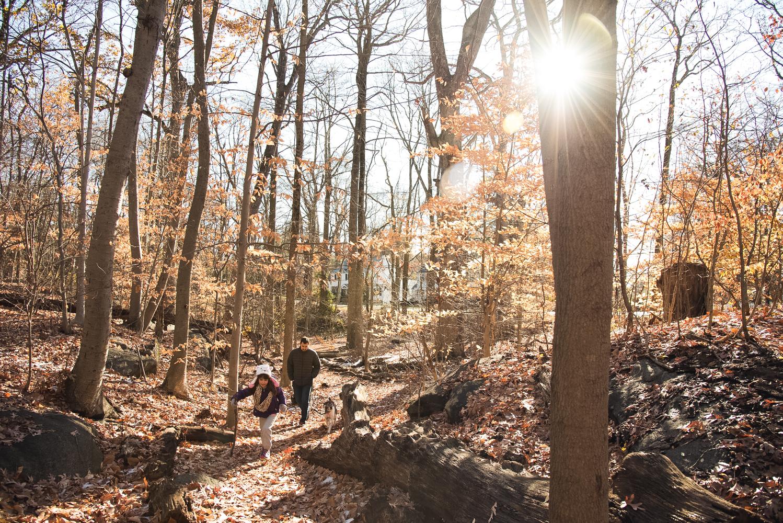 hike (12 of 13).jpg