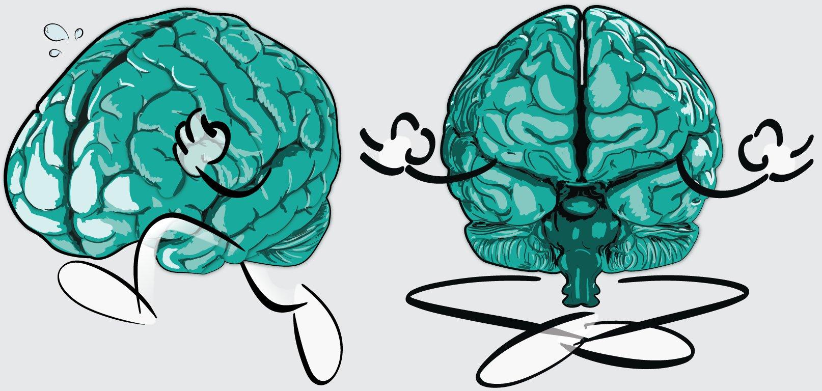 MindCise Brains