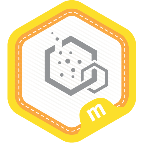 Hive Community Member,  Hive Learning Networks