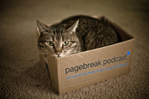 cat-box-logo-300x199.jpg