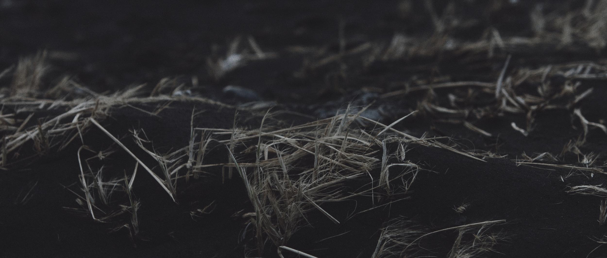 Sequence 03.00_01_27_19.Still033.jpg