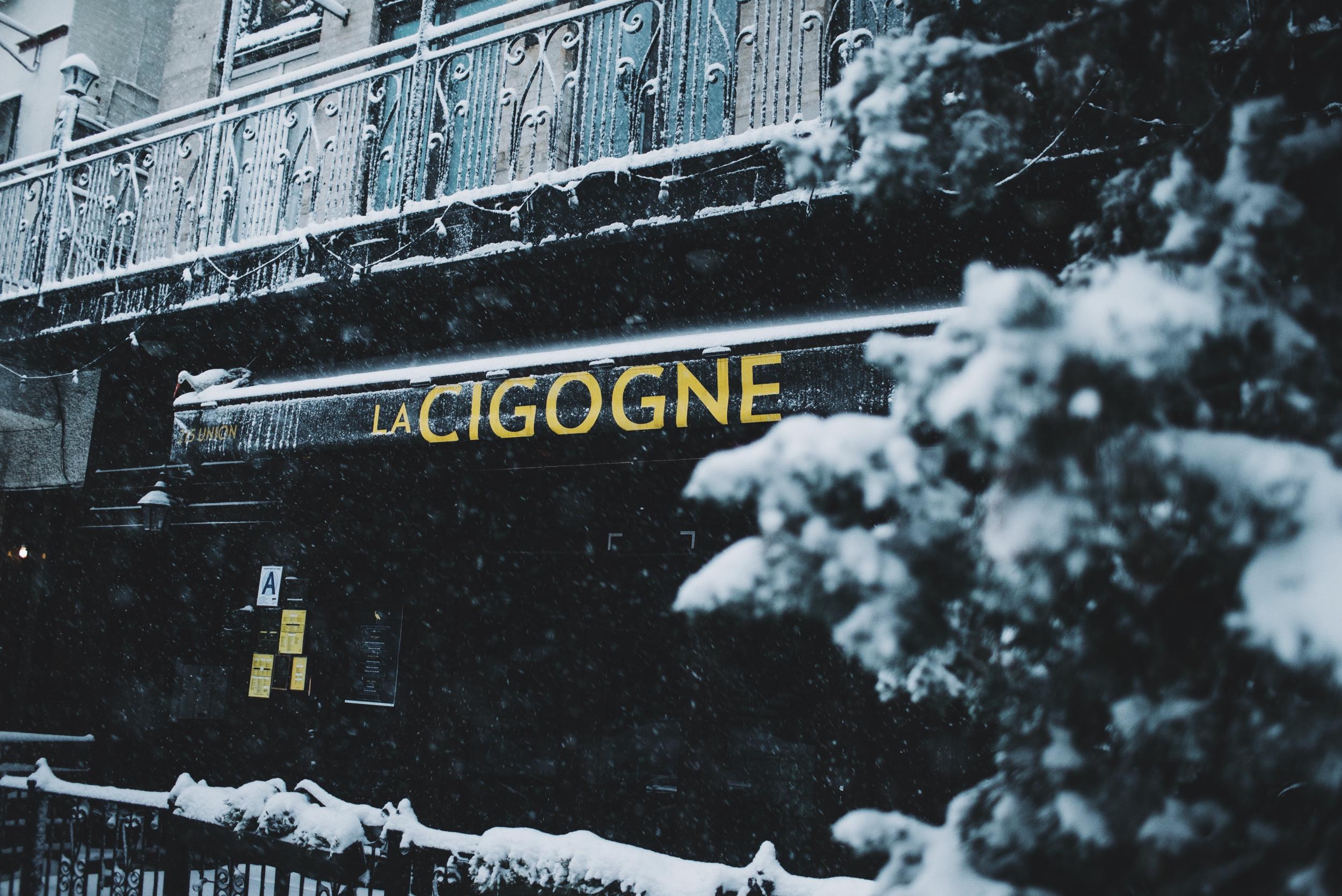 snow-106.jpg