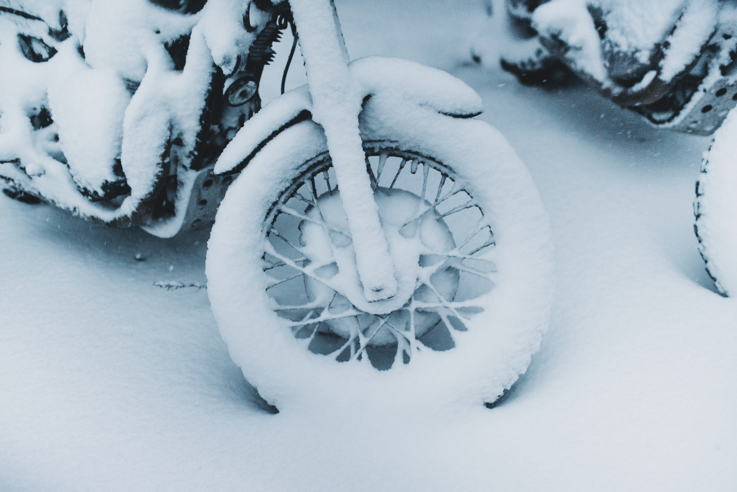 snow-109.jpg