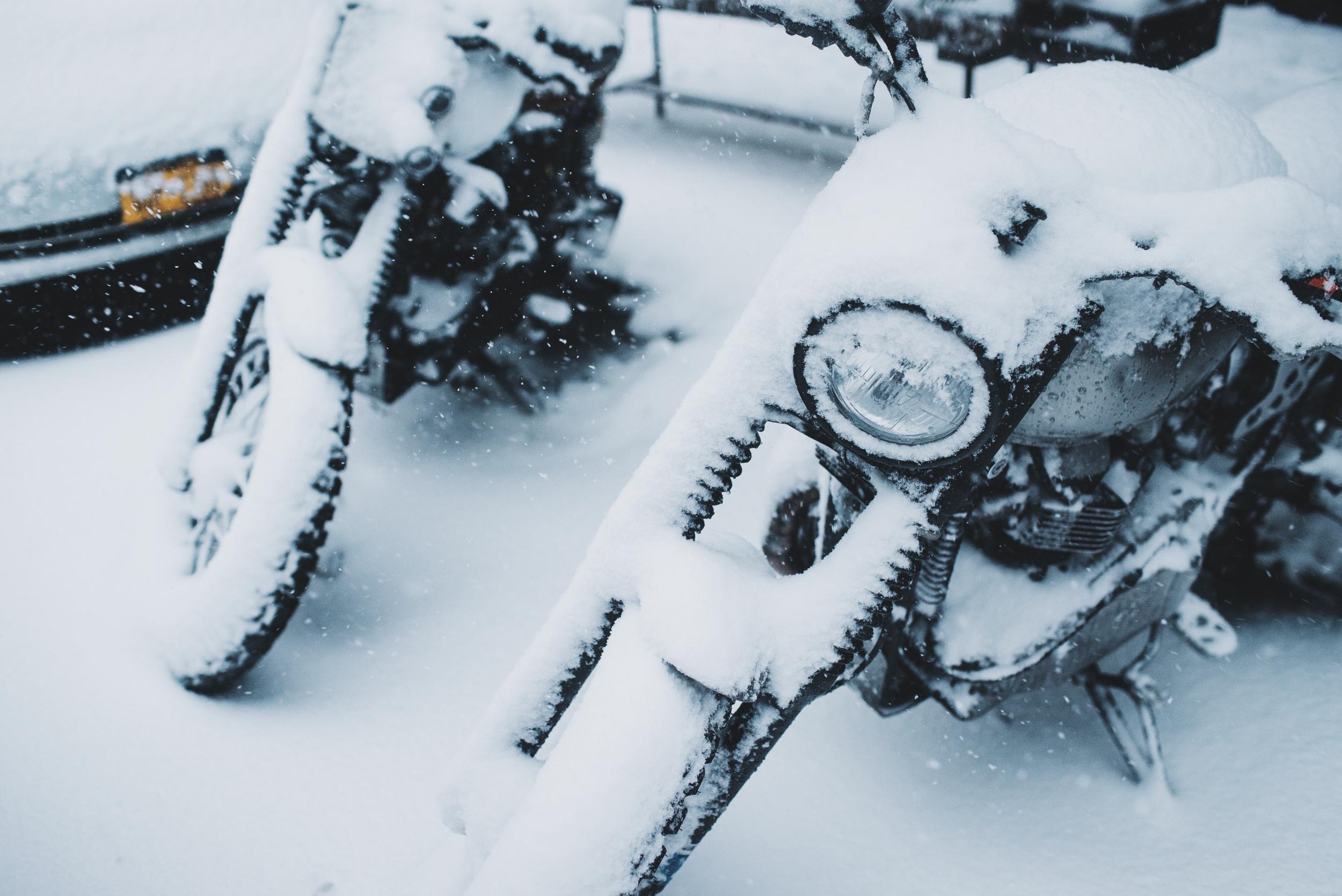 snow-110.jpg