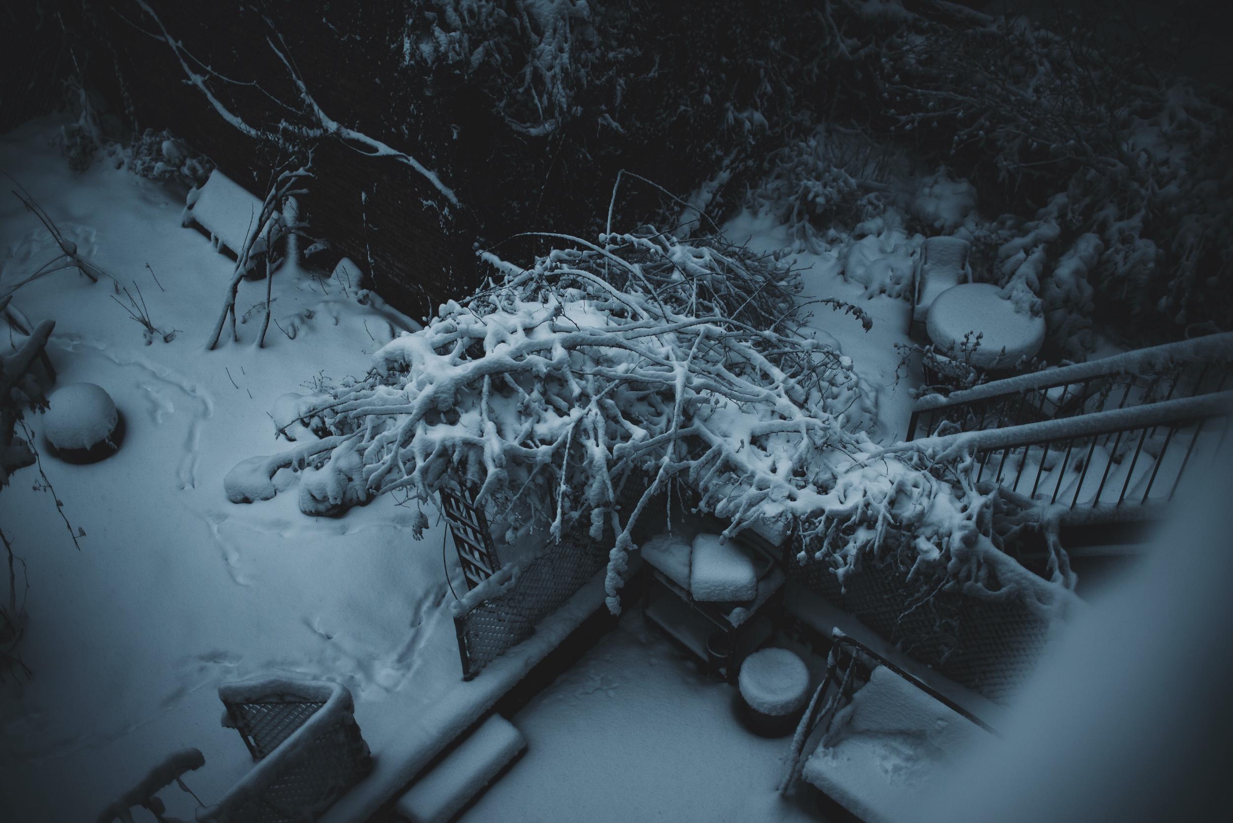 snow-126.jpg