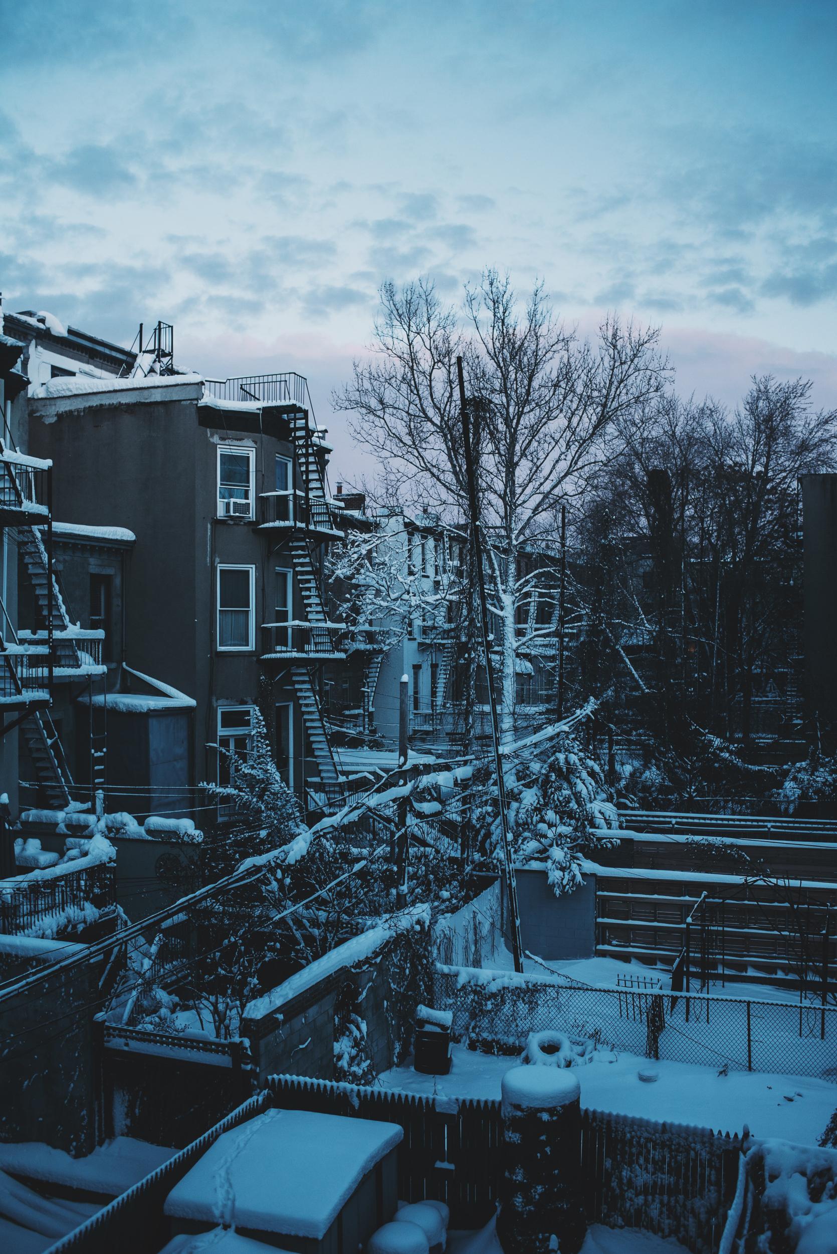 snow-129.jpg