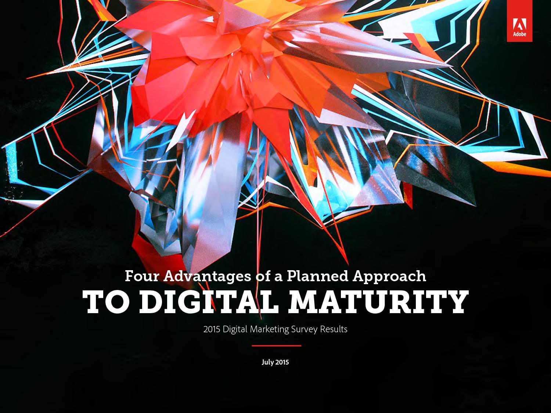 2015 Digital Marketing Survey
