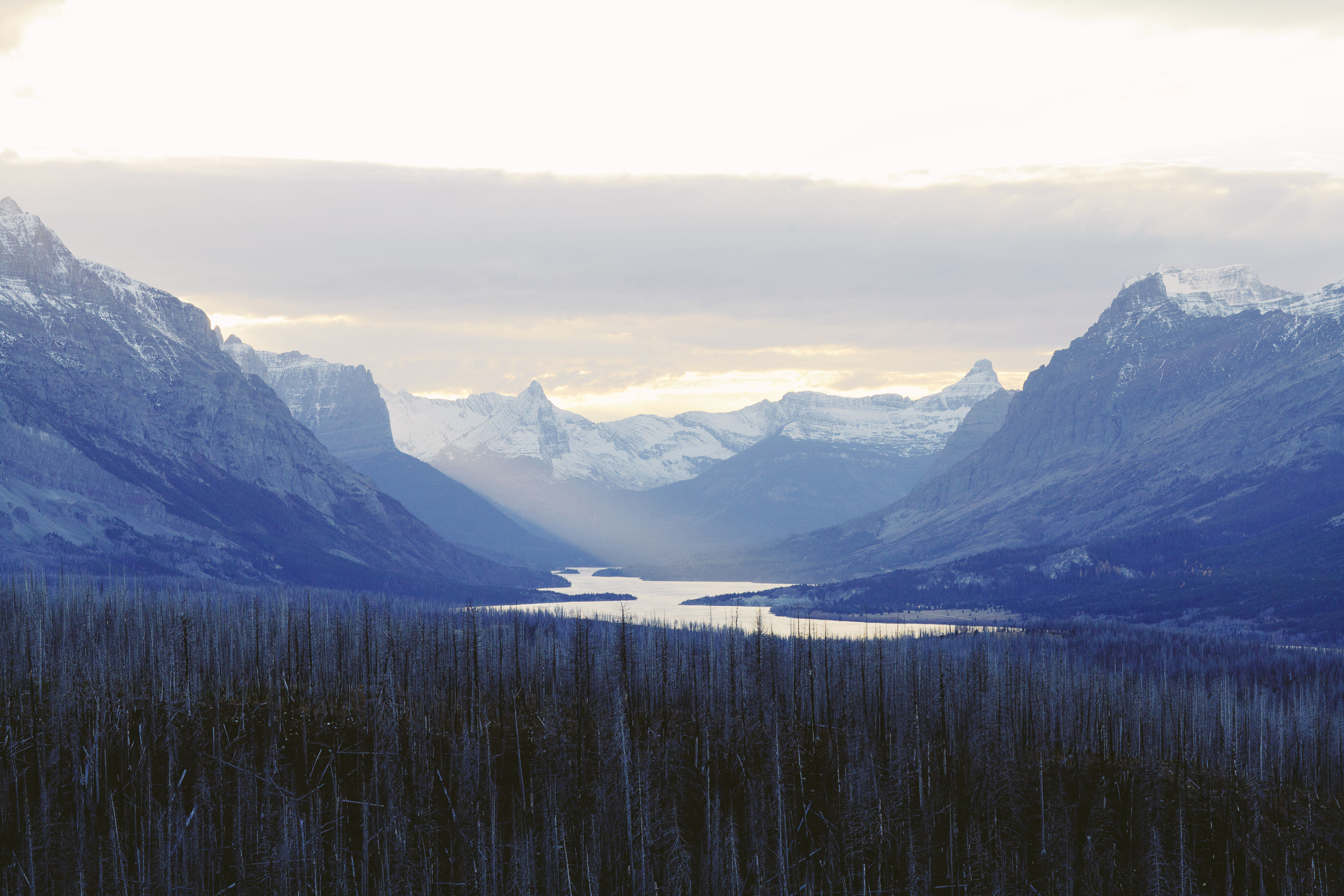 2014_Montana_+Glacier-6436.jpg
