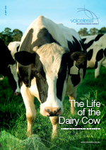 Voiceless Report on the Life of the Dairy Cow
