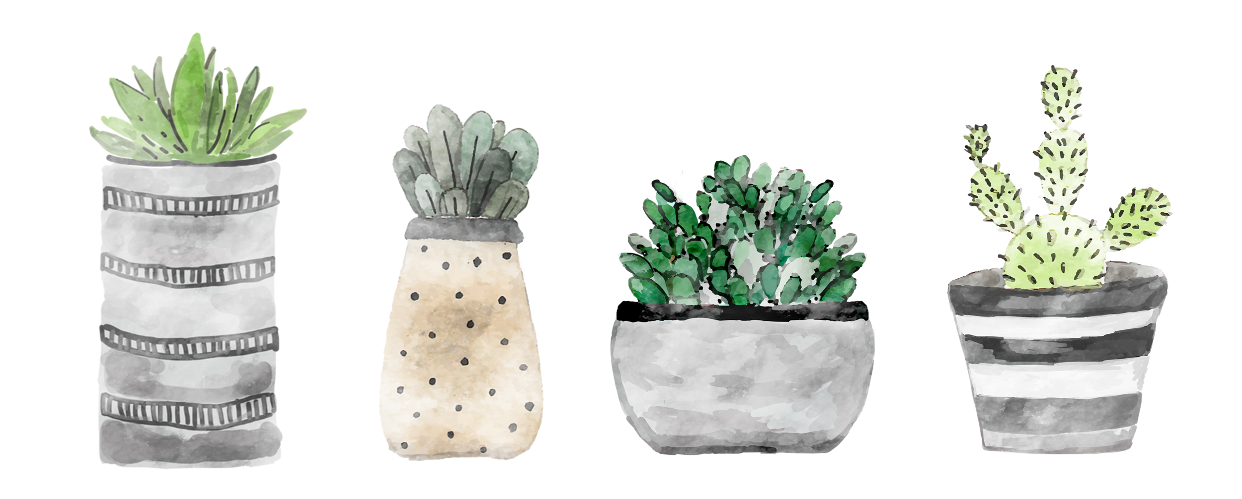 plants COnline.png